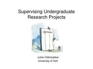 Supervising Undergraduate Research Projects
