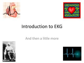 Introduction to EKG