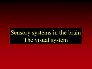 Sensory systems in the brain The visual system