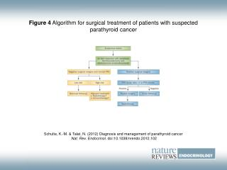 Figure 4 Algorithm for surgical treatment of patients with suspected parathyroid cancer