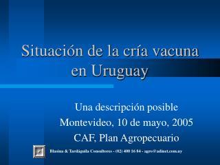 Situación de la cría vacuna en Uruguay