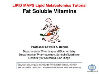 LM9 Fat Soluble Vitamins