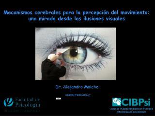 Mecanismos cerebrales para la percepción del movimiento:  una mirada desde las ilusiones visuales