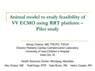 Animal model to study feasibility of VV ECMO using RRT platform – Pilot study