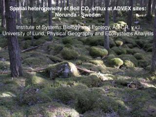 Spatial heterogeneity of Soil CO 2  efflux at ADVEX sites: Norunda - Sweden