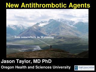 New Antithrombotic Agents