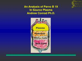 An Analysis of Parvo B 19 In Source Plasma Andrew Conrad Ph.D.