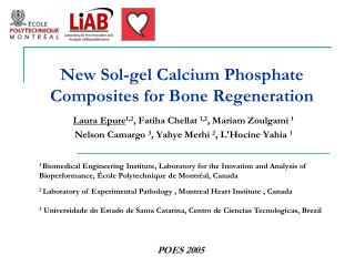 New Sol-gel Calcium Phosphate Composites for Bone  Regeneration