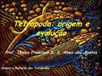 Tetrapoda: origem e evolu  o  Prof. Thales Francisco S. S. Alves-dos-Santos   Origem e Radia  o dos Tetr podes