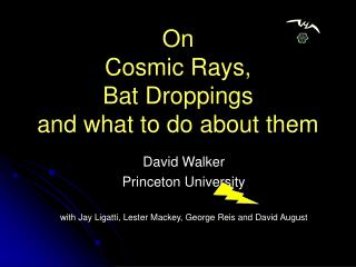 On  Cosmic Rays,  Bat Droppings  and what to do about them