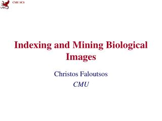 Indexing and Mining Biological Images