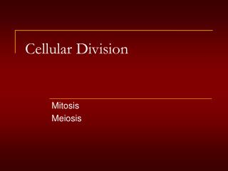Cellular Division