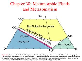 Chapter 30: Metamorphic Fluids and Metasomatism