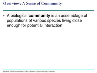 Overview: A Sense of Community