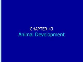 CHAPTER 43 Animal Development