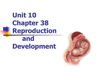 Unit 10 Chapter 38 Reproduction  	and  Development