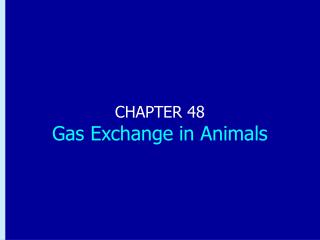 CHAPTER 48 Gas Exchange in Animals