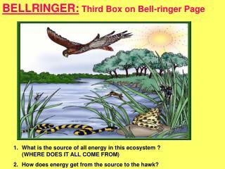 BELLRINGER:  Third Box on Bell-ringer Page