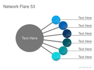 Network Flare 53