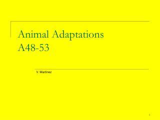 Animal Adaptations A48-53