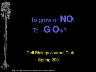 To grow or  NO t  To    G r O w? Cell Biology Journal Club Spring 2001