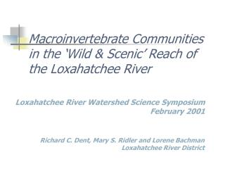 Macroinvertebrate Communities in the 'Wild & Scenic' Reach of the Loxahatchee River