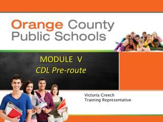 MODULE  V CDL Pre-route
