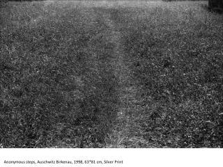 Anonymous steps, Auschwitz Birkenau, 1998, 63*81 cm, Silver Print