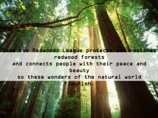 Save the Redwoods League protects and restores redwood forests