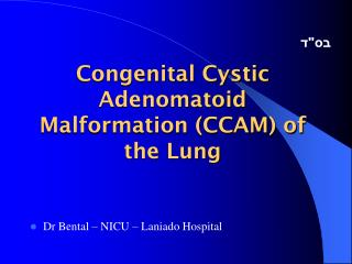 Congenital Cystic Adenomatoid Malformation CCAM of the Lung