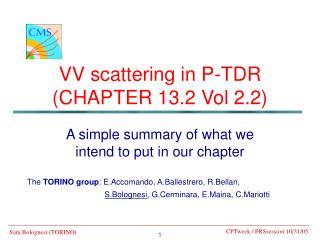 VV scattering in P-TDR  (CHAPTER 13.2 Vol 2.2)