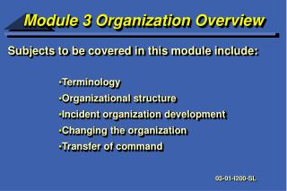 Module 3 Organization Overview