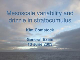 Mesoscale variability and drizzle in stratocumulus