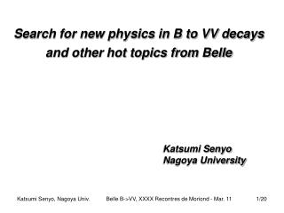 Search for new physics in B to VV decays and other hot topics from Belle