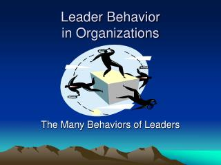 Leader Behavior  in Organizations