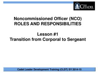 Noncommissioned Officer (NCO) ROLES AND RESPONSIBILITIES