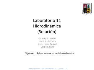 Laboratorio  11 Hidrodinámica (Solución)