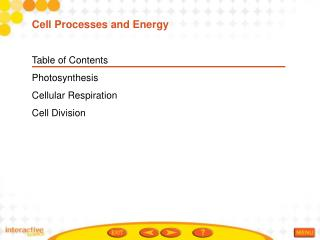 Table of Contents Photosynthesis Cellular Respiration Cell Division