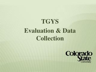 TGYS Evaluation & Data Collection