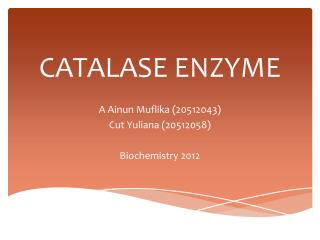 CATALASE ENZYME