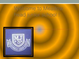 Welcome to Meadow head junior school !
