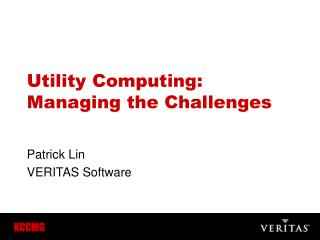 Utility Computing: Managing the Challenges