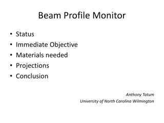 Beam Profile Monitor