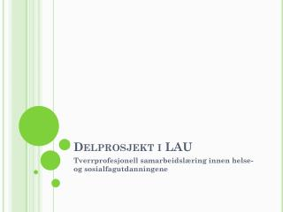 Delprosjekt i LAU