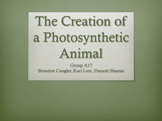 The Creation of a Photosynthetic Animal