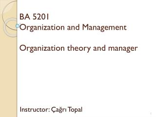 BA 5201 Organization and Management Organization  t heory and  m anager