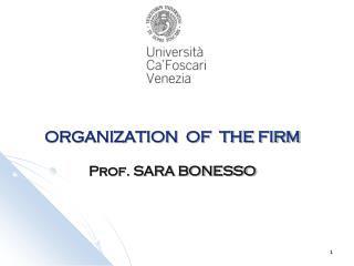 ORGANIZATION  OF  THE FIRM  Prof. SARA BONESSO