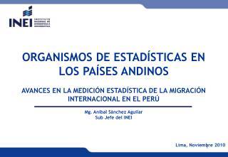 ORGANISMOS DE ESTAD STICAS EN LOS PA SES ANDINOS   AVANCES EN LA MEDICI N ESTAD STICA DE LA MIGRACI N INTERNACIONAL EN E