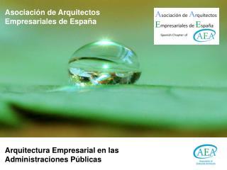 Asociaci�n de Arquitectos  Empresariales de Espa�a
