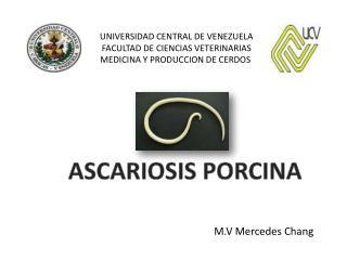 UNIVERSIDAD CENTRAL DE VENEZUELA FACULTAD DE CIENCIAS VETERINARIAS